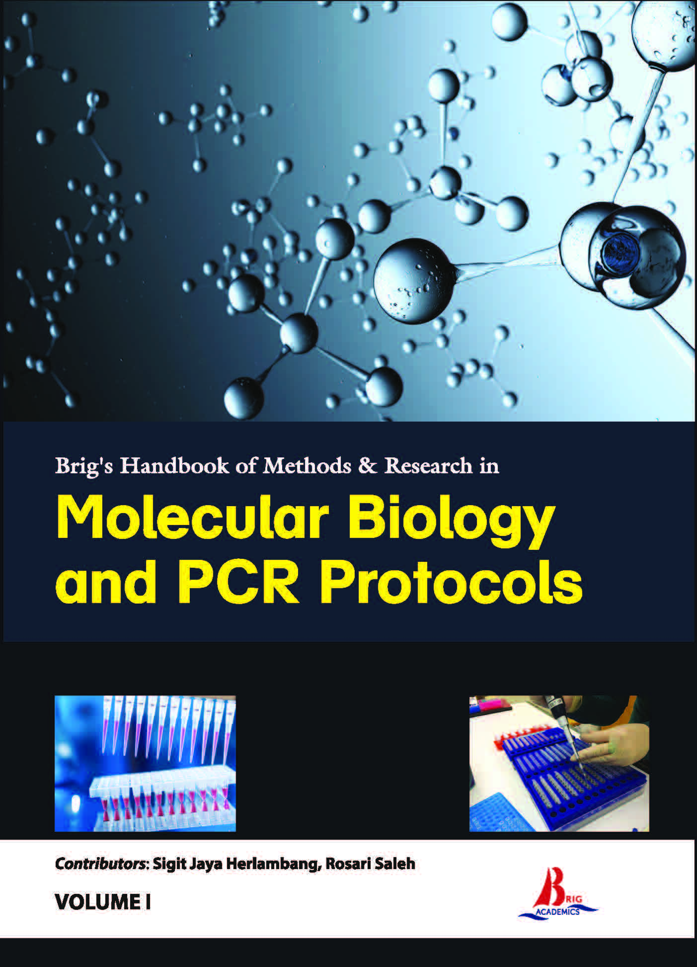 Brig's Handbook of Methods & Research in Molecular Biology and PCR Protocols