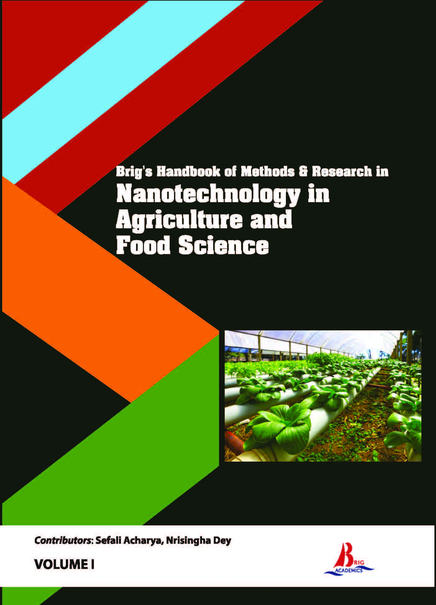 Brig's Handbook of Methods & Research in Nanotechnology in Agriculture and Food Science